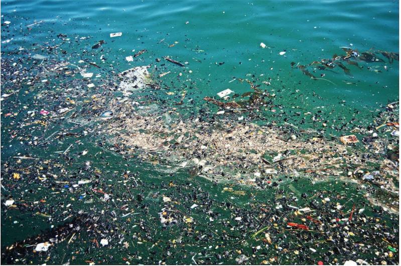 polluting pristine waters.png