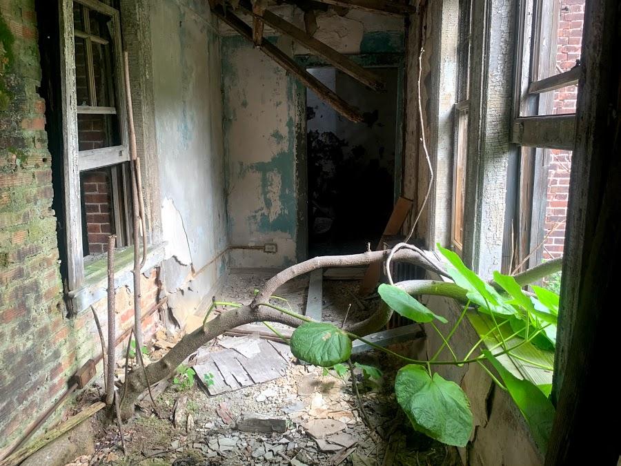 Deserted house N. Brother Island 1.jpg