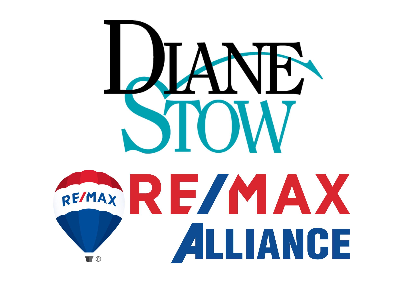 Diane Stow web.jpg