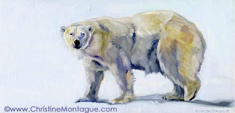 Polar Bear Aurora.