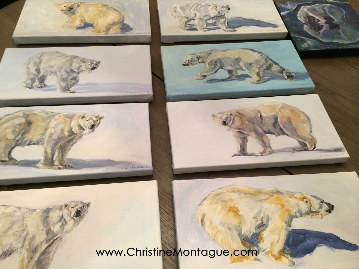 Polar bear oil paintings by Christine Montague, Ontario, Canada