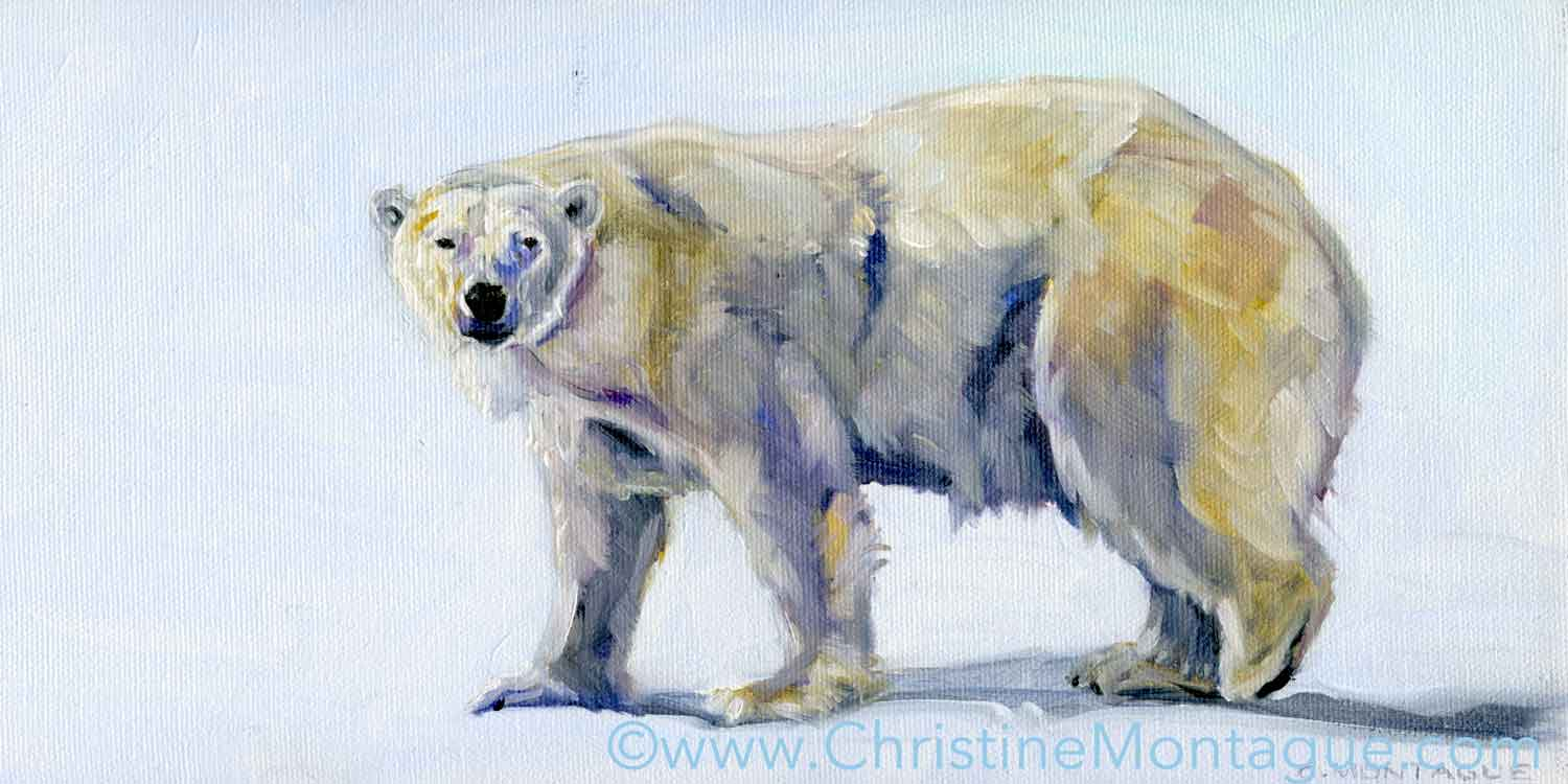 "Aurora . ©Christine Montague (6"" x 12"" )original oil paintings of polar bears  I've read that some Inuit communities believe that the  aurora borealis  are animal spirits,  but this  Aurora  has her paws firmly planted on the ground. Contact   Christine Montague Polar Bear Art  ."