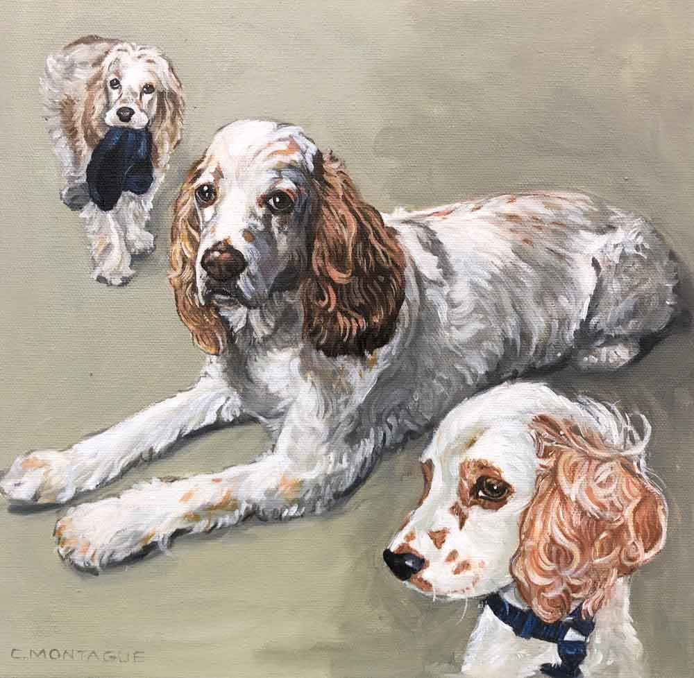 "Dog Portrait. 3 Stages. 12"" x 12"". Oil. Private collection."