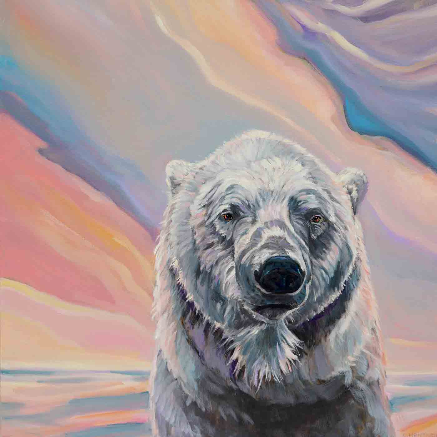 In the Pink.   Sunset Polar Bear Series . ©Christine Montague Please contact Christine  here
