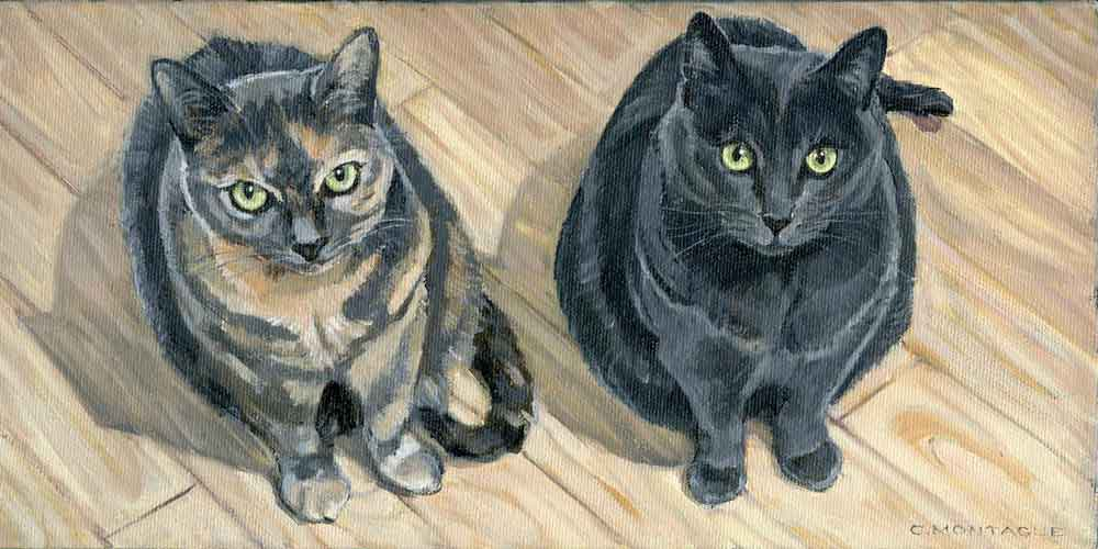 """Two cats. 6"""" x 12. Oil Private collection."""