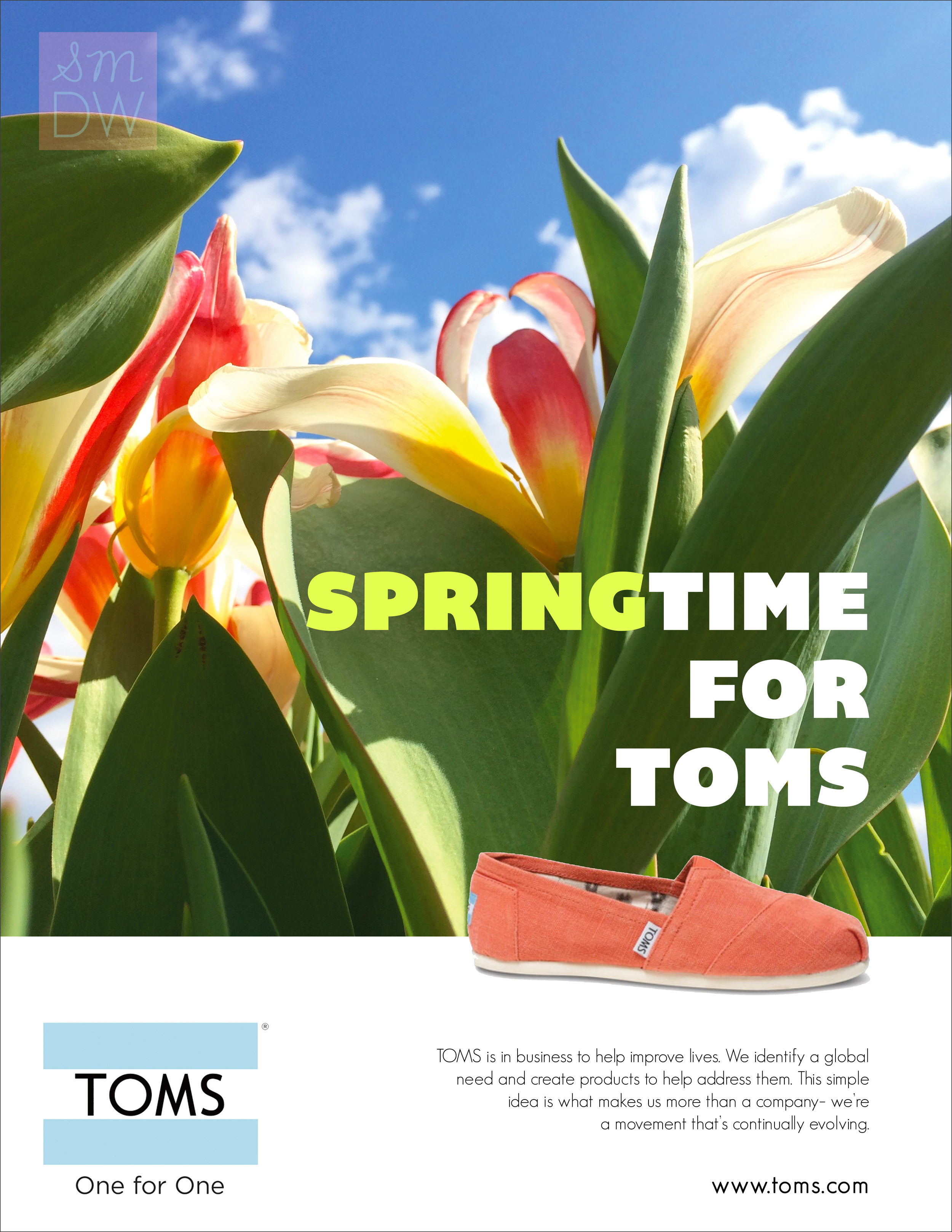 Ad-TOMS-1