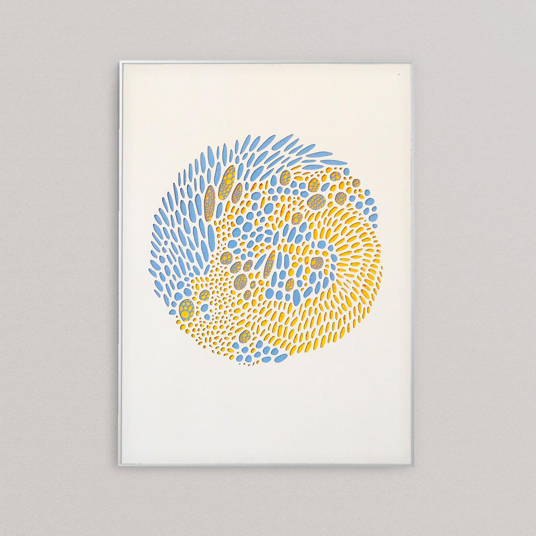 Prokary in blue-yellow