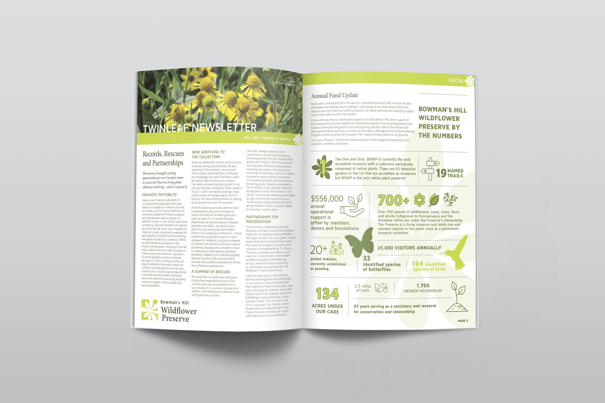 Quarterly Newsletters with infographics