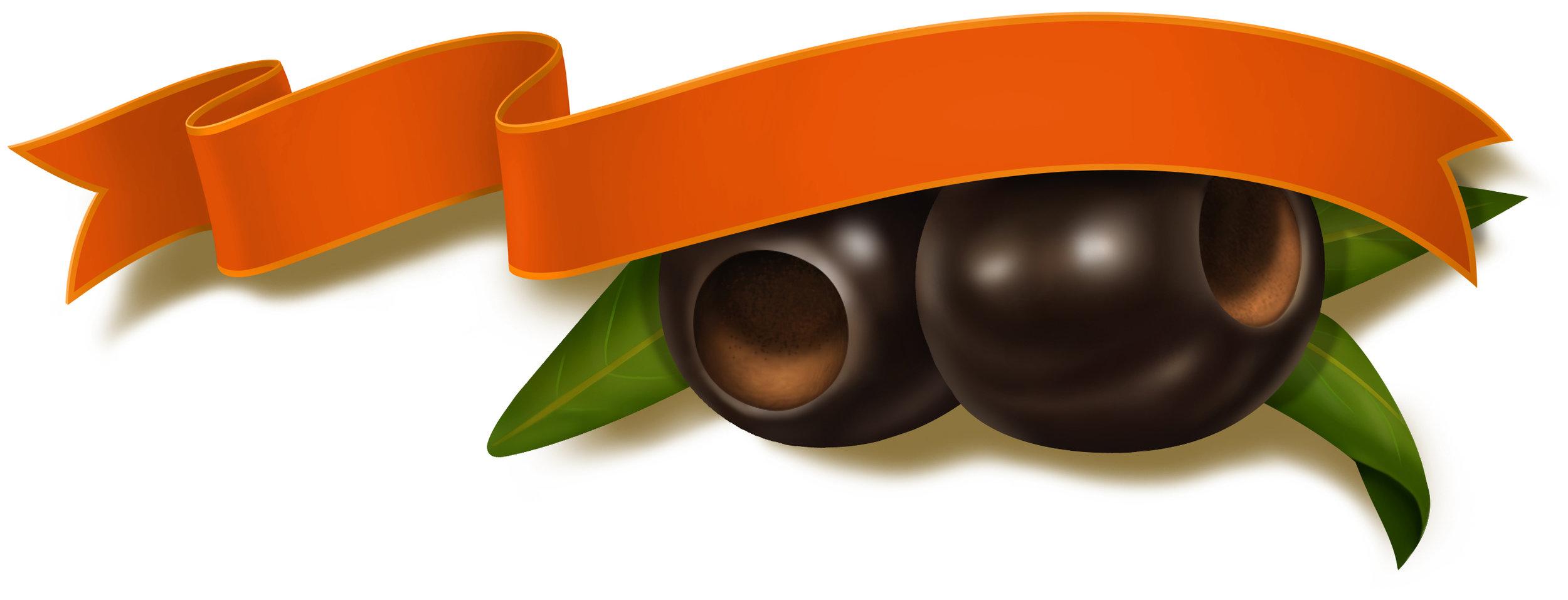 Client:  Ball Design Group