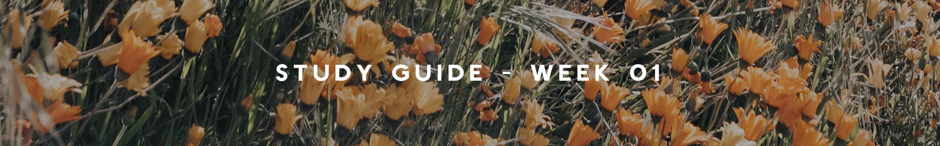 studyguide-week01-website.png