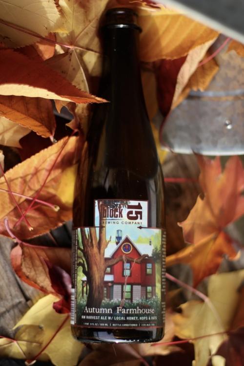 block 15 autumn farmhouse.jpg
