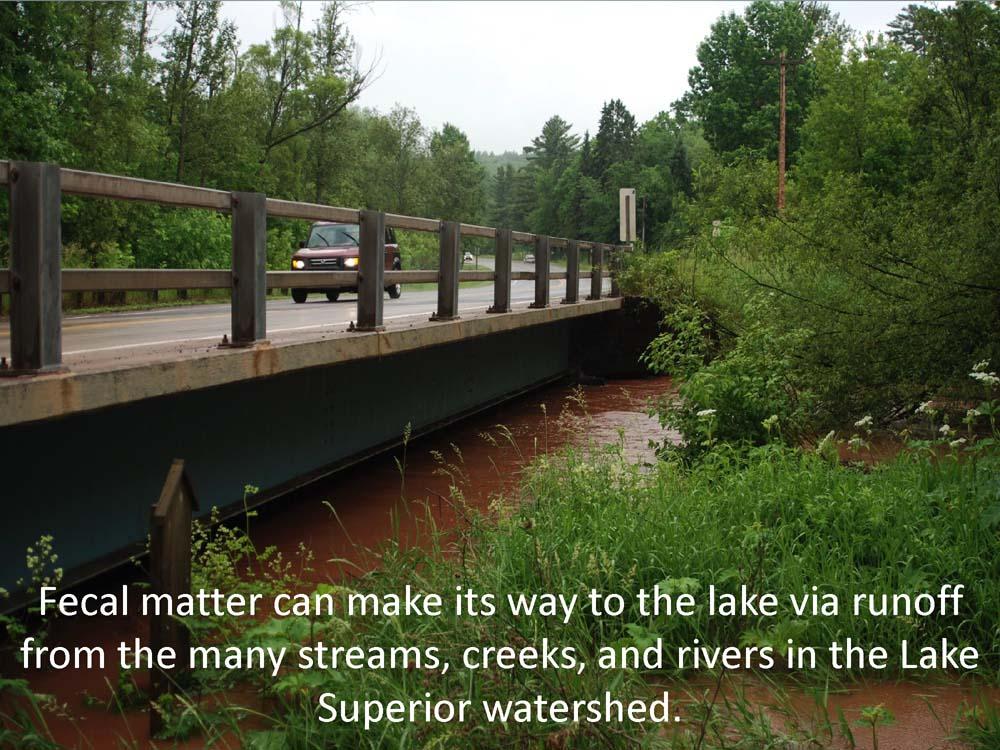 Badgerwood+and+Lake+Superior+v1_Page_09.jpg
