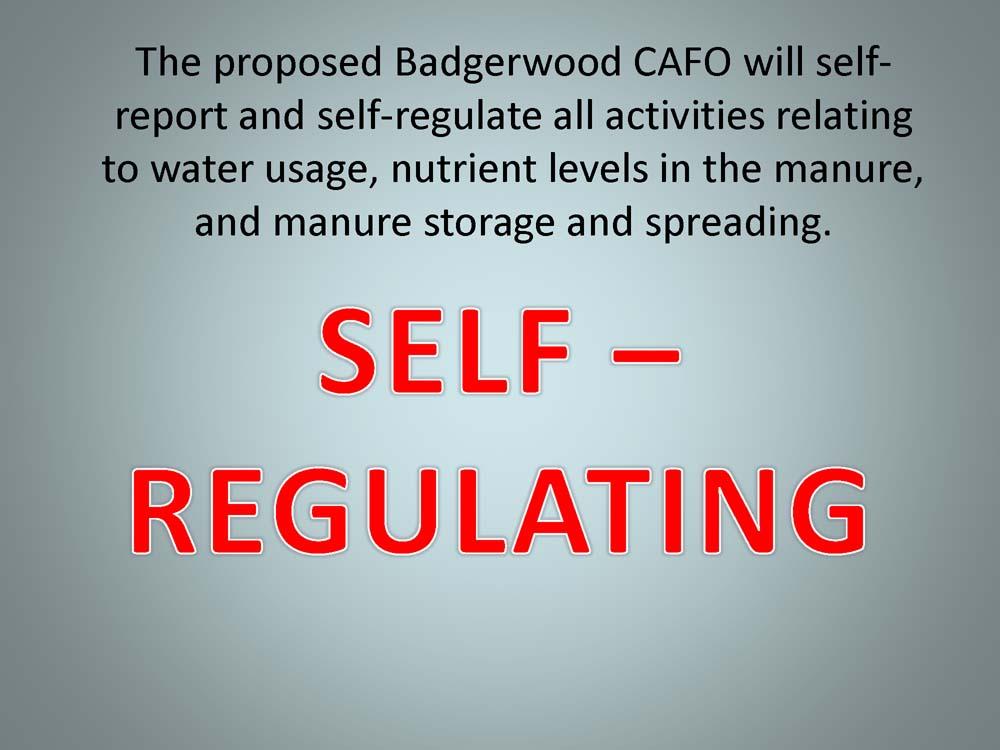 Badgerwood+and+Lake+Superior+v1_Page_37.jpg