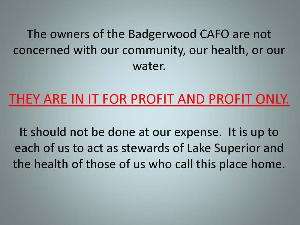 Badgerwood+and+Lake+Superior+v1_Page_51.jpg