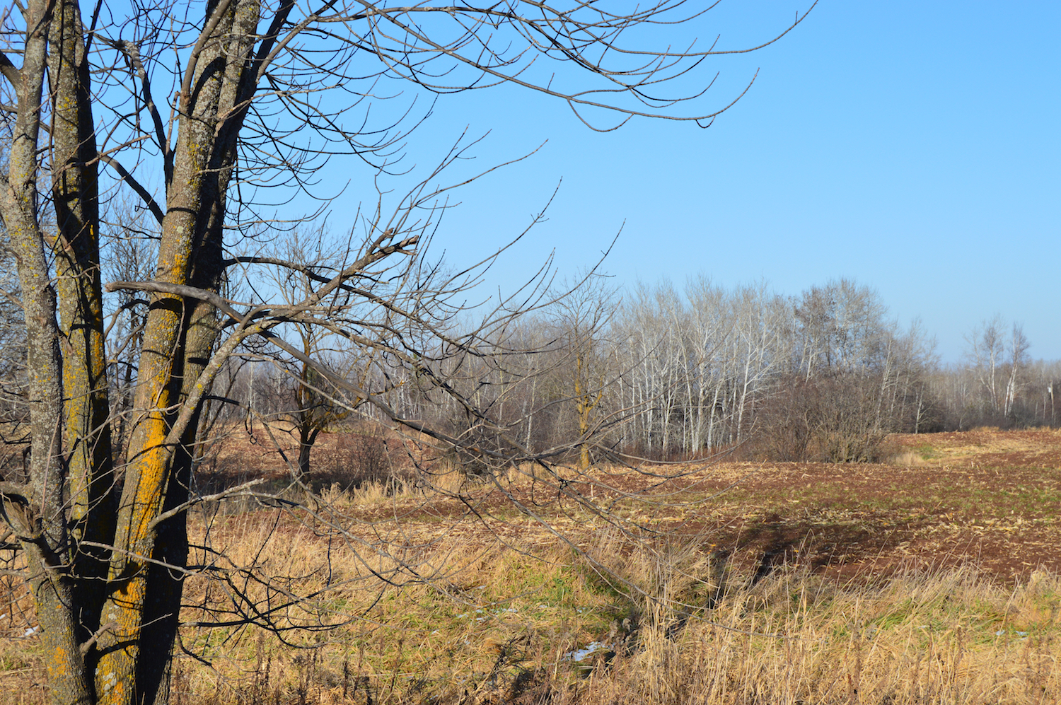 A view near the proposed CAFO
