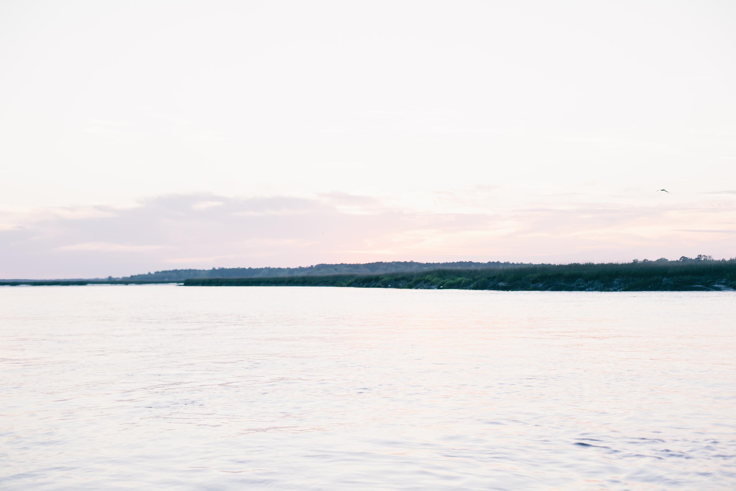 tybee-9182.jpg