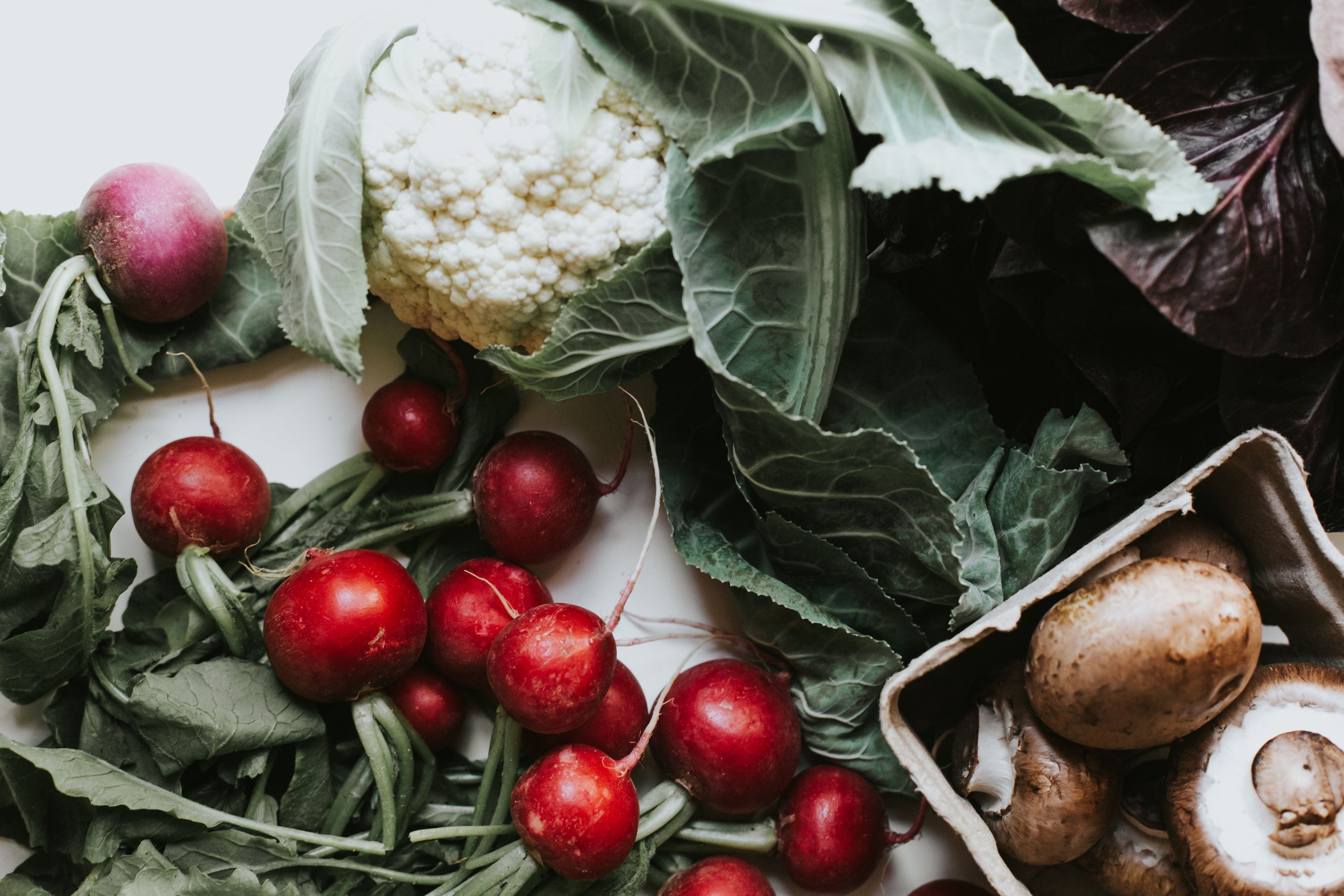 recipes - a catalog of seasonal, simple dishes and drinks