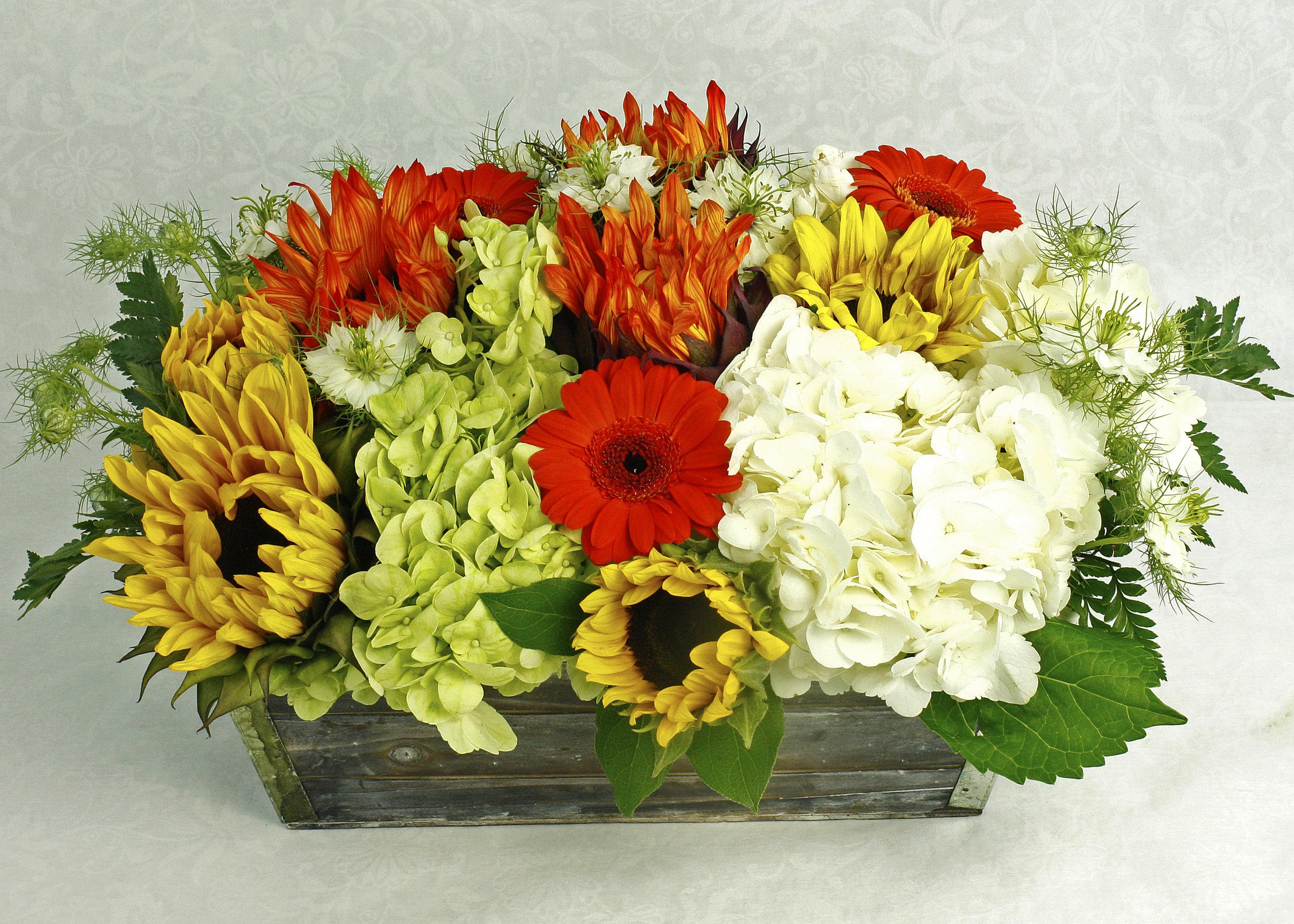 Summer Harvest $65-$125 -