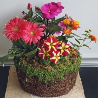 Vibrant Blooming Basket $65-$125 -