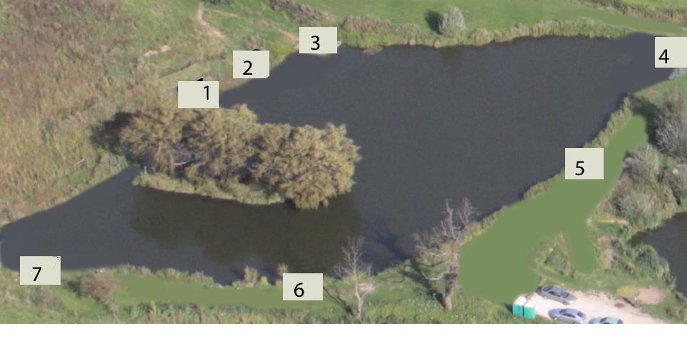 willows pegs.jpg