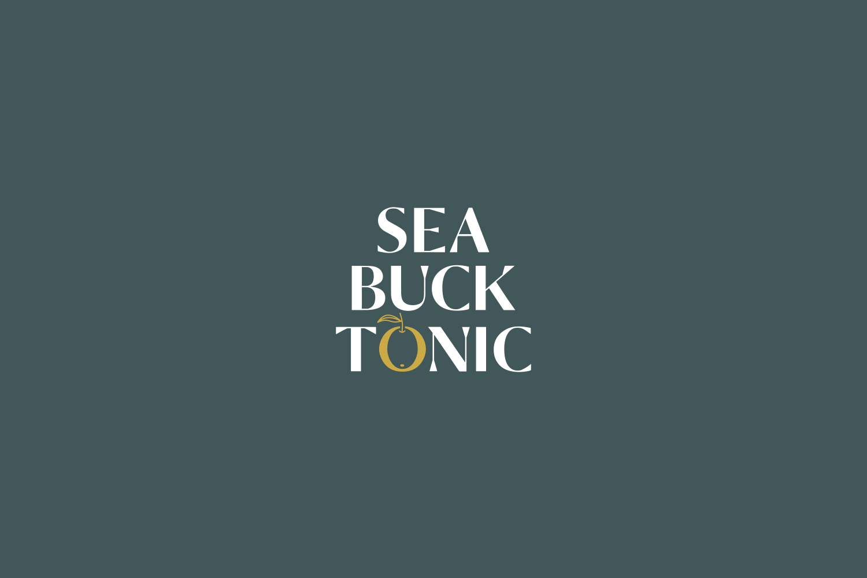05.Becca_Allen_Sea_Buck_Tonic_Logo.jpg