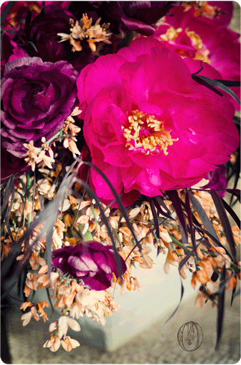 Peony-Burgandy-Rananculus-Orange-Ginestra-Dark-Vintage-Bouquet-Oleander-NJ-Bucks-County-PA-Wedding-Florist