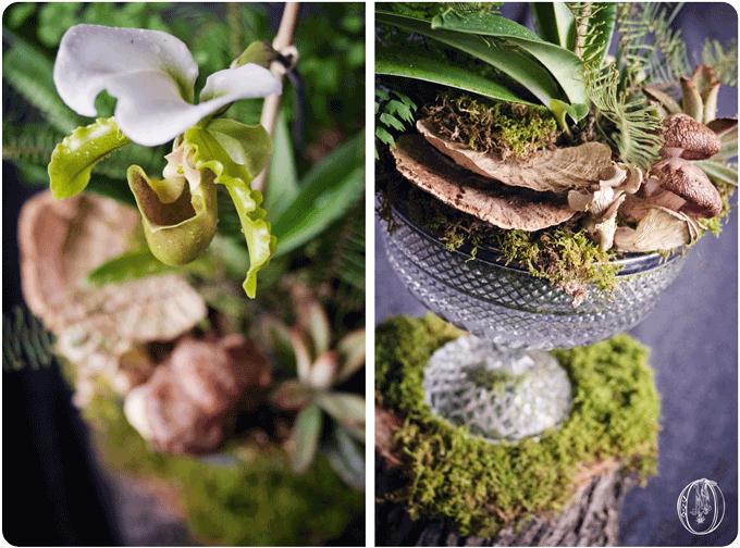 Holly-Hedge-Estate-Woodland-Lady Slipper-Orchid-Mushroom-Succulent-Moss-Terrarium-Centerpiece-Oleander-New-Jersey-Bucks-County-PA-Wedding-Florist