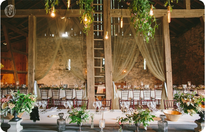 Edison-Bulb-Suspended-Olive-Branch-Floral-Chandelier-Sheer-Reception-Draping-Vintage-Rustic-Barn-Wedding-Organic-Farm-Wedding-Anthropologie-Wedding-Rodale-Institute-PA-Lauren-Fair-Oleander-Bucks-County-PA-NJ-Wedding-Florist-Floral-Design-Events
