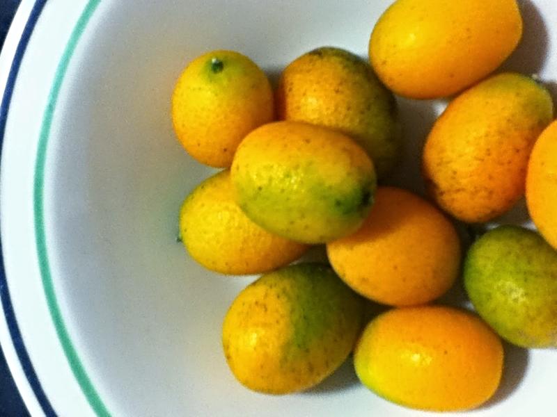 Amy_lemons.jpg