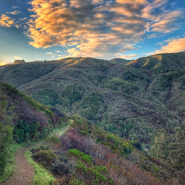 @insidetrail really knows how to pick an arena !! #insidetrailracing #pacifica #trailracing #trailphotography #thetreadmill #cali #calitrails #trailrunning