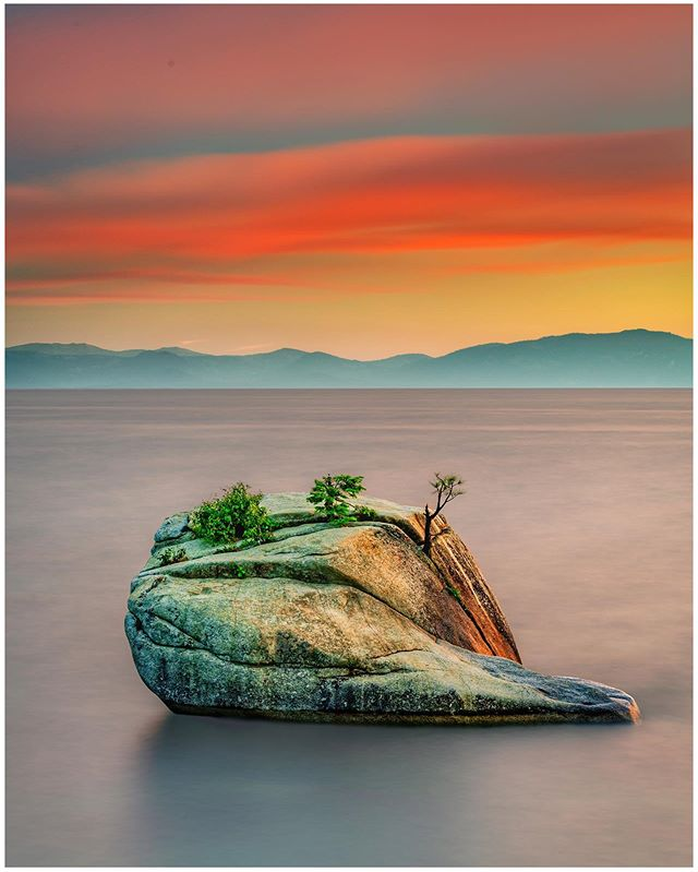 It's been almost a year since I've posted any pictures, but something about this picture of the #bonsairock in Tahoe reminds me so much of what makes a great mom. Happy Mother's Day to all the amazing moms out there. #likearock #bonsairock #bonsaitree #mothersday #laketahoesunset #laketahoe