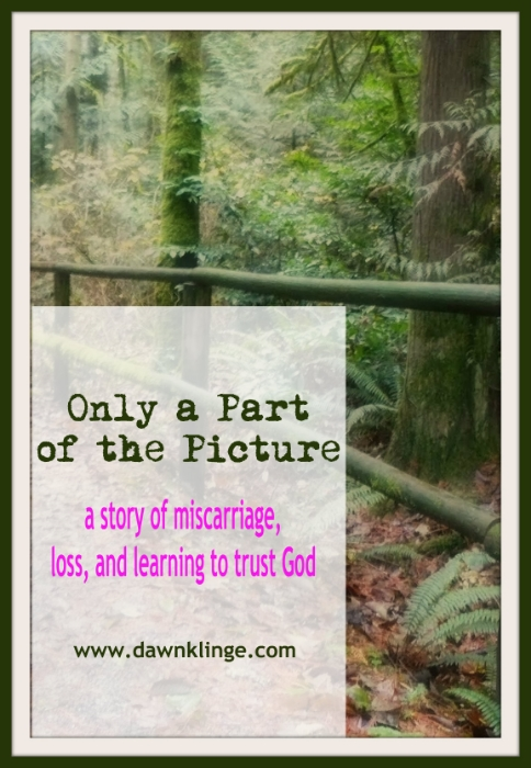 Only a part of the picture:  a story of miscarriage and learning to trust God