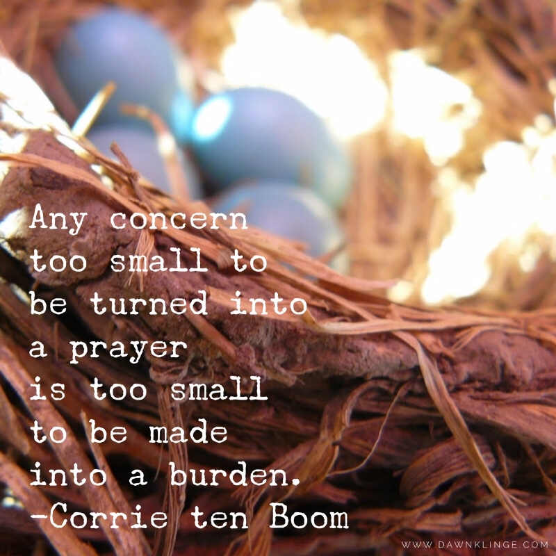 Any concern too small to be turned into a prayer is too small to be made into a burden. ~ Corrie Ten Boom