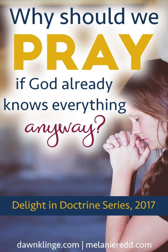 Why should we pray? I purpose of prayer I christian theology of prayer I christian doctrine of prayer I talking to God I Above the Waves II #prayer #delightindoctrine