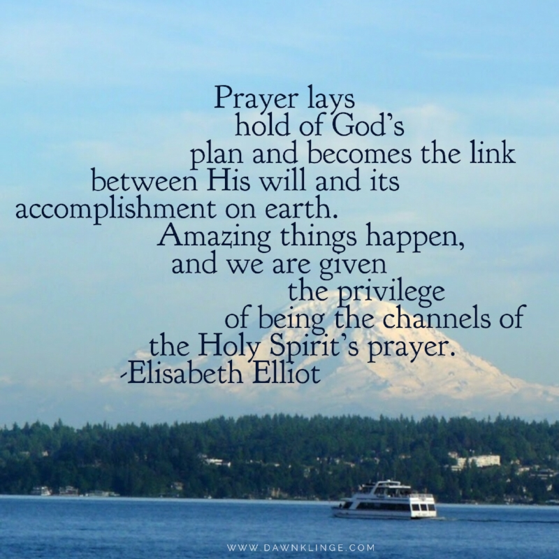 Prayer lays hold of  God's plan and becomes the link between His will and its accomplishment on earth. Amazing things happen, and we are given the privilege of being the channels of the Holy Spirit's prayer. ~ Elisabeth Elliot