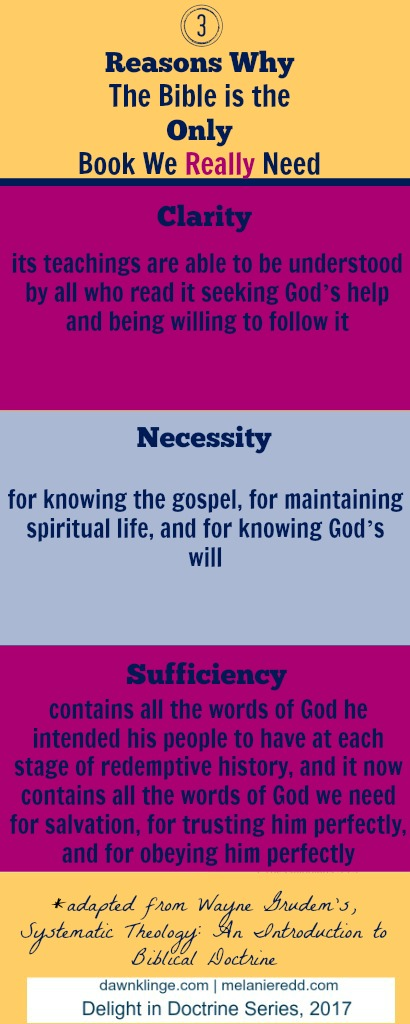Three Reasons the Bible is the Only Book we Really Need   accuracy of Scripture   importance of the Bible   why the Bible is true   Christian doctrine   Above the Waves    #scripture #bible
