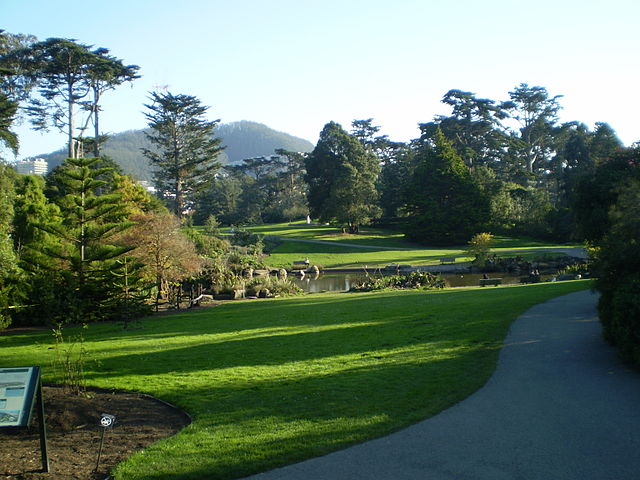 "Photo: ""Golden Gate Park 07"" by Superchilum - Own work. Licensed under CC BY-SA 3.0 via Wikimedia Commons"