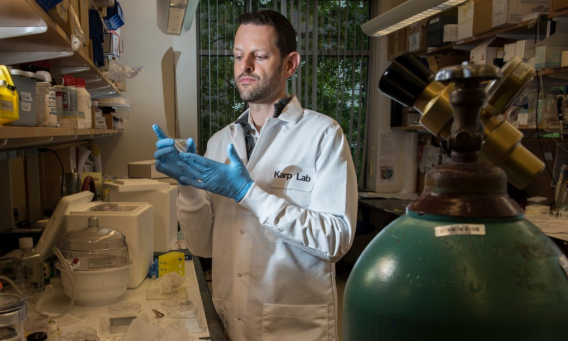 Jeffrey Karp in his lab at BWH Photograph: Rick Friedman for the Guardian
