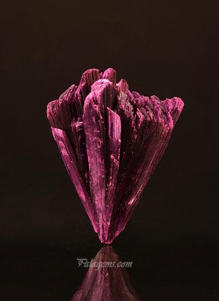April flowers? Erythrite from the Bou Azar District, Ouarzazate Province, Morocco, 4 x 3.2 cm. Price available upon request. (Photo: Mia Dixon)