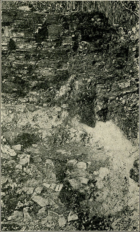 Fig. 10.—Photograph showing the emerald formation (here in horizontal beds) underlain by the Cenicero (grayish-white) and the Cama (note calcite rhombs). (Exposure between Banco Central and Los Chulos. Height of picture, 5 m.)