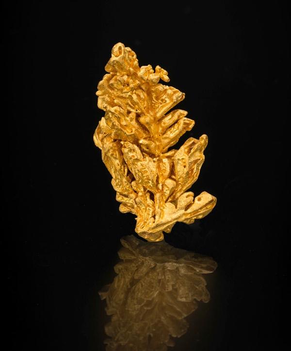 Gold , Pontes e Lacerda, Brazil, 3.5 x 2 cm, 16.58 grams. Price available upon request. (Photo: Mia Dixon)