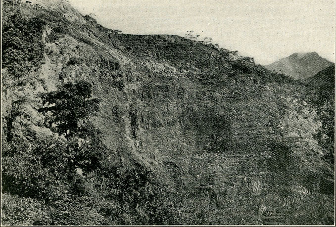 Fig. 11.—Photograph of Banco Central, one of the principal open cuts, showing terraces by means of which the emerald formation is worked.