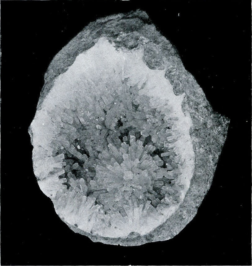 Natrolite from Leipa, Czechoslovakia.  A miniature cavern partly filled with groups of slender crystals.