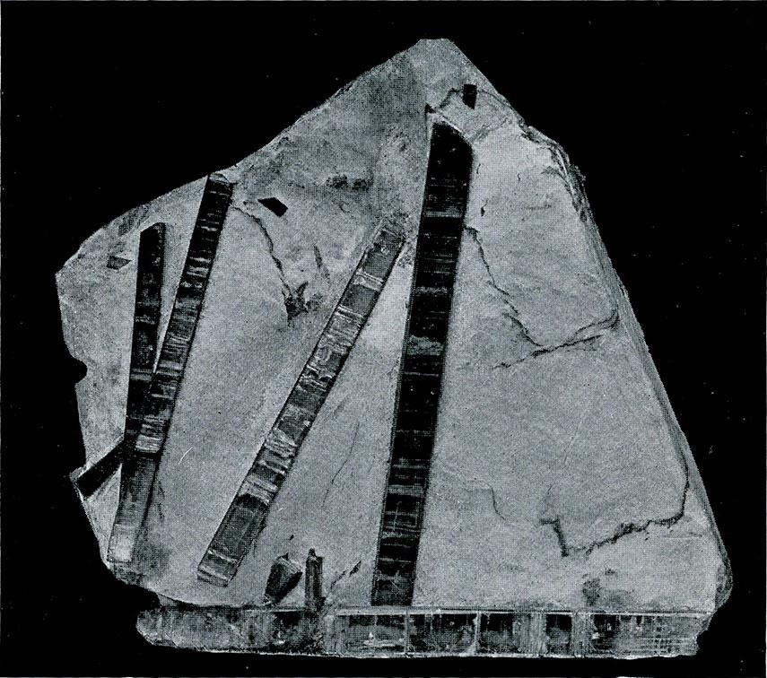 Cyanite from St. Gotthard, Switzerland.  Blade-like crystals in mica schist.