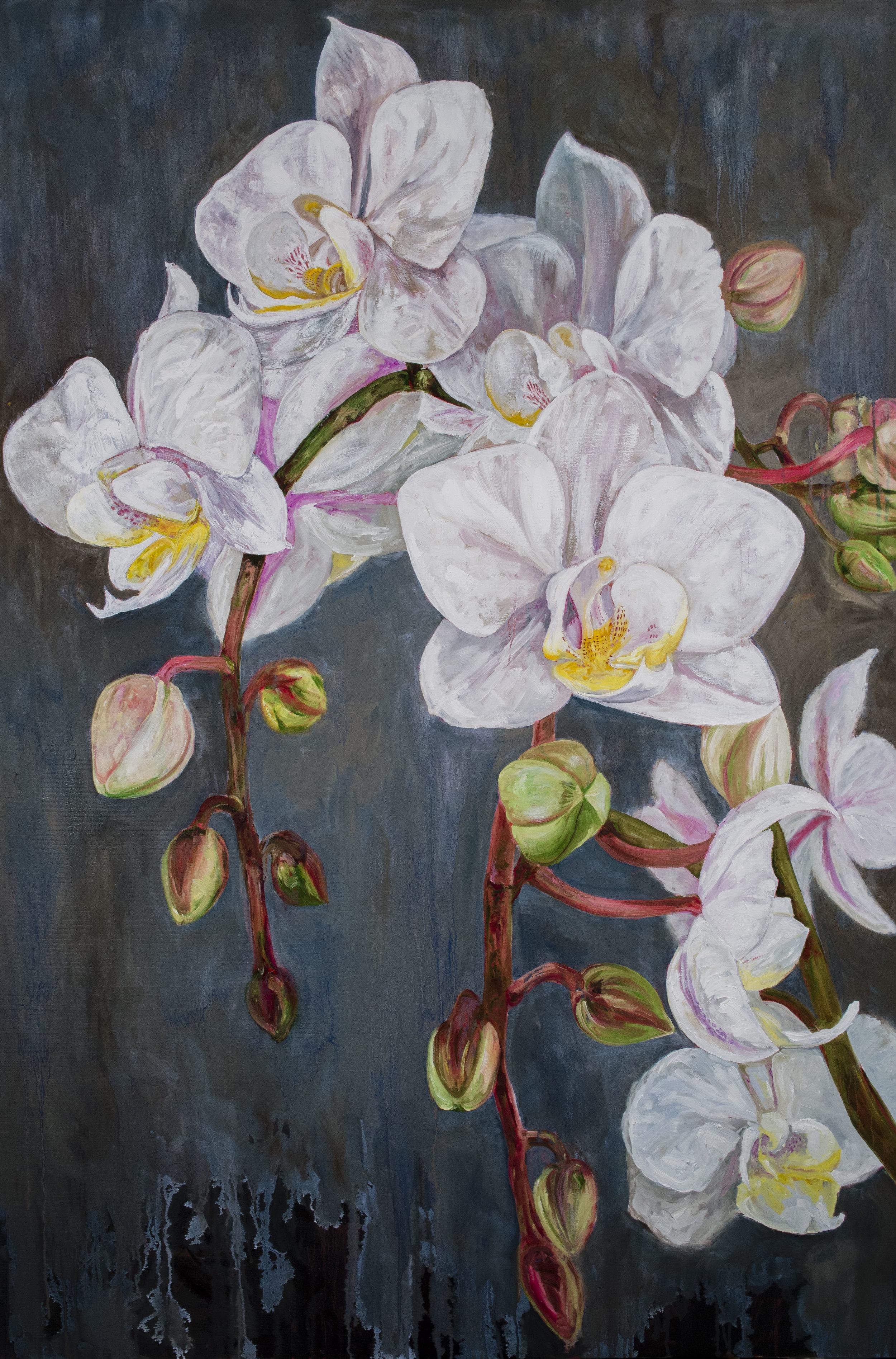 "Window Orchid   Oil  60""x 40"""