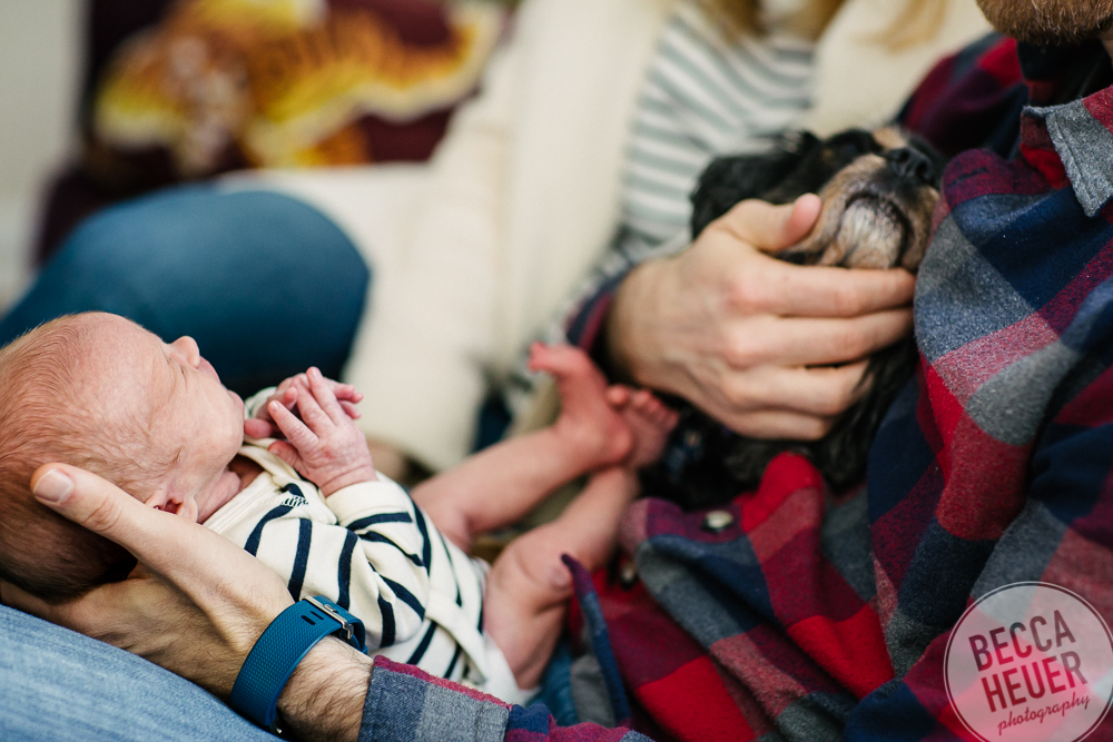 Olson Family_Astrid Newborn 2017_Blog-001.jpg
