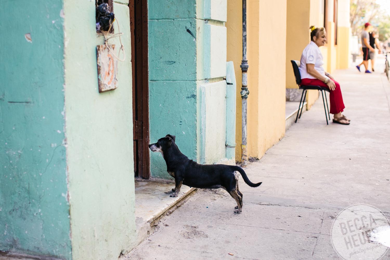 Cuba-017.jpg