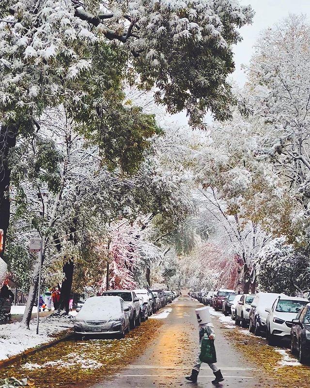 Snow on Halloween? Bah humbug. (304/365)
