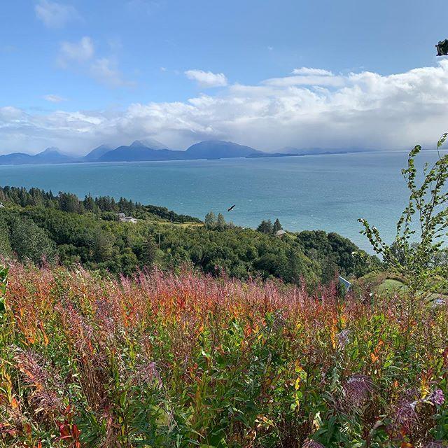 Homer, Alaska  #nofilter #homeralaska