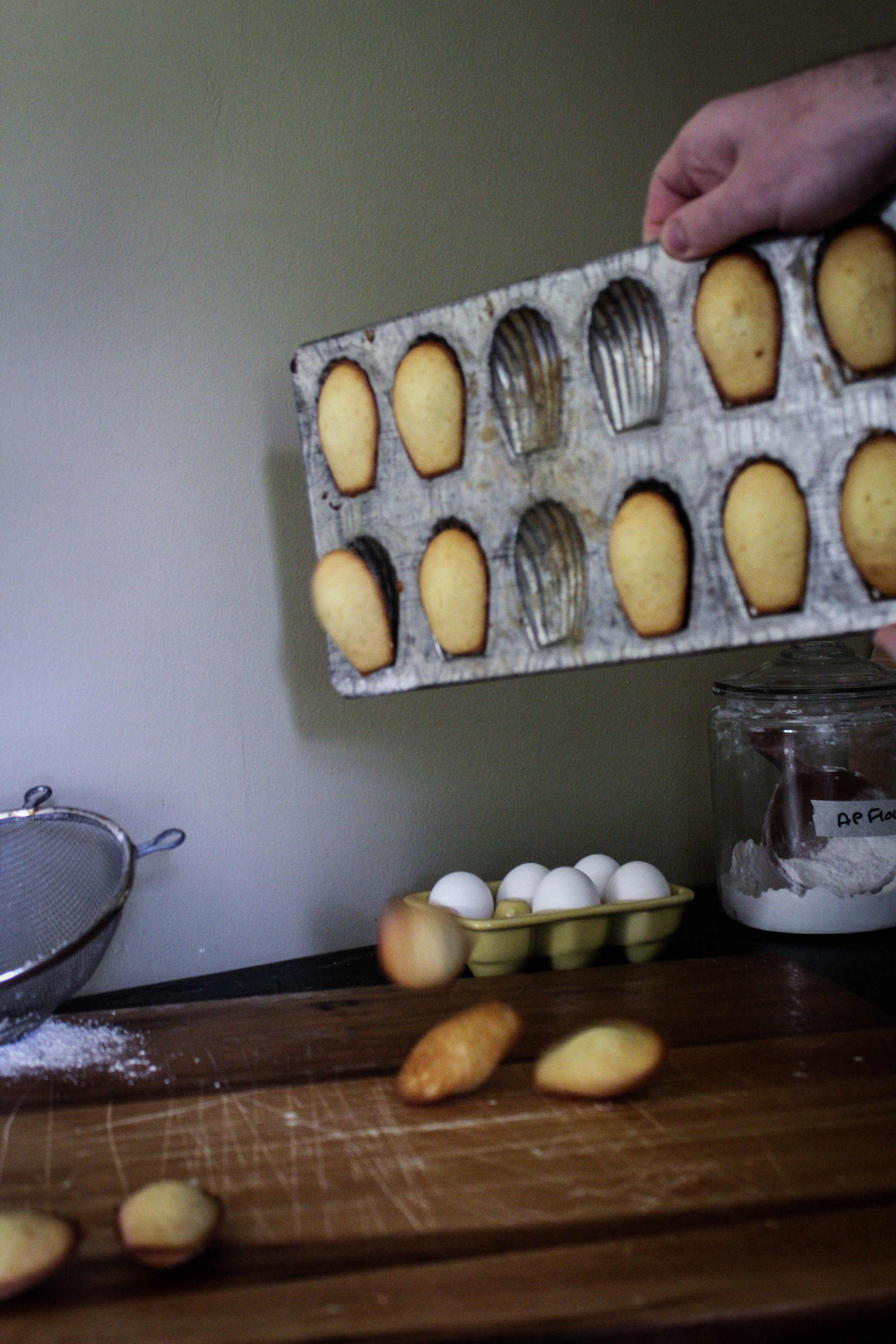 Honey Madeleines from Ruby Tandoh-4.jpg